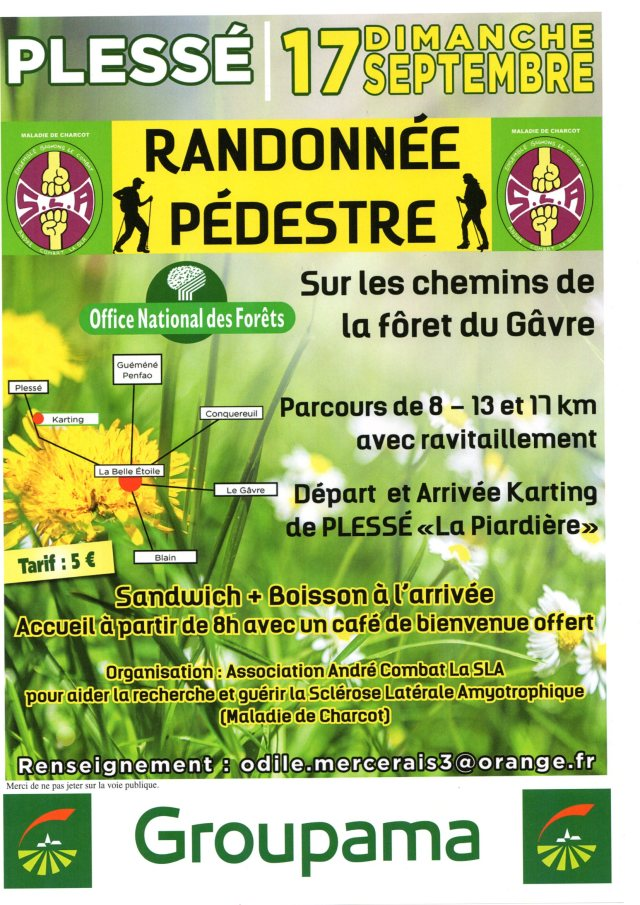 Rando Forêt du GAVRE (2)